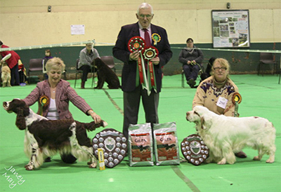 Best in Show & Reserve Best in Show  with judge Dr Ron James